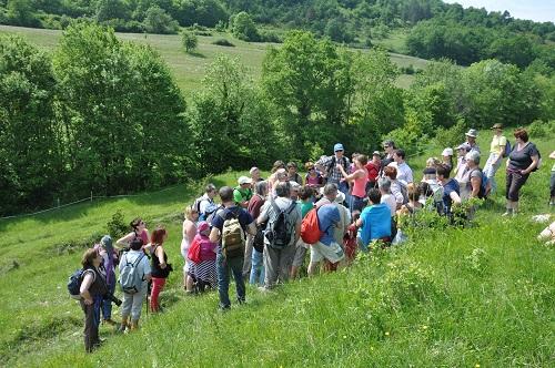 Balade découverte Natura 2000
