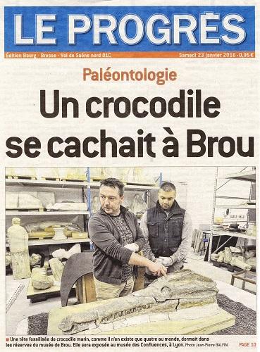 Crocodile Montmerle 01