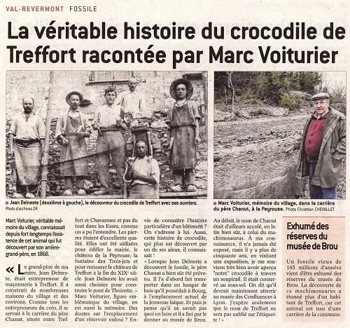 Crocodile Montmerle 03