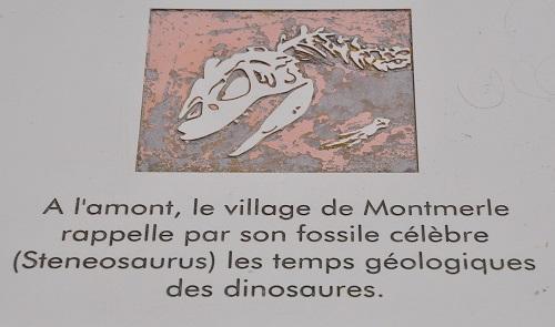 """""""Disparu"""" depuis 175 ans, le saurien n'était pas encore connu sous le nom de """"Machimosaurus"""" . . . même par la scientifique qui le site sur le panneau !"""